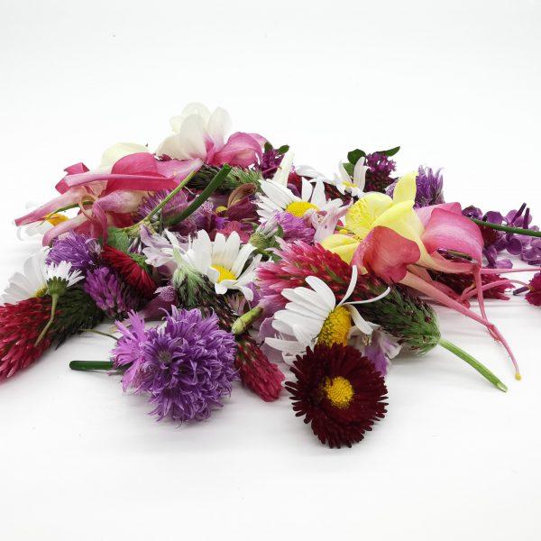 Sveže jedilno cvetje